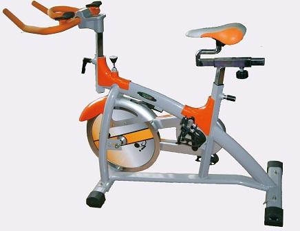 飛輪有氧健身車-專業用(1)     CHANSON CS-3005