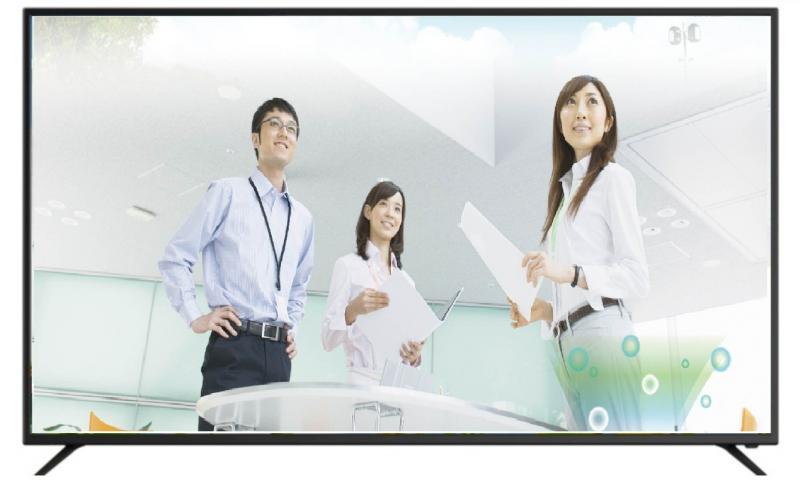 聲寶SAMPO DS-65AJ80D 65型LED液晶顯示器附視訊盒